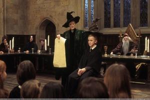 """""""Грустный день"""": звезду """"Гарри Поттера"""" зачислили не на тот факультет. Распределительная шляпа ошиблась"""