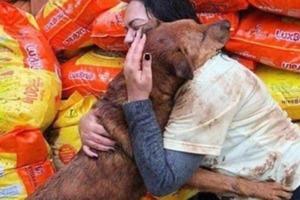 Женщина пожертвовала в приют для бездомных собак корм. Питомцы платят ей благодарностью