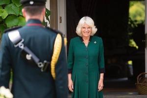 У жены принца Чарльза свой способ борьбы со старением. Камилла использует пчелиный яд