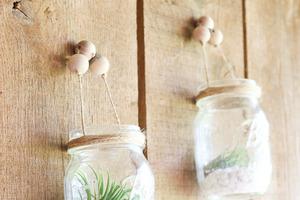 Из обычных банок я сделала красивые контейнеры для воздушных растений. Получилась оригинальная декоративная композиция