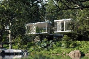 Архитектура и дизайн модернистского дома, деликатно «подвешенного» в лесу Сан-Паулу: смесь современных и антикварных элементов