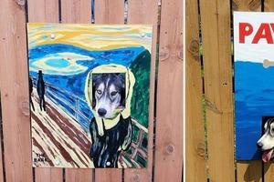 Владельцы каждый раз рисуют новые плакаты для отверстия в заборе, которое они сделали для своих собак. Соседям нравится