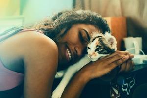 Колыбельная для кошки? Ученые записали успокаивающую музыку для домашнего питомца