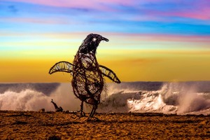 Художник создает фигуры животных из коряг и тины на пляже. Чтобы избежать толпы зевак, мужчина работает ночью (фото)