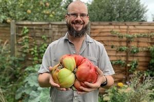 Англичанин показал огромный помидор со своего огорода: фото