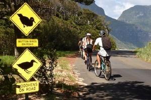 Сказочный тропический остров Лорд-Хау, на котором запрещены кондиционеры, а автомобили можно использовать только в крайнем случае