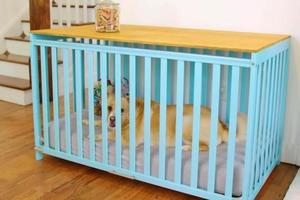 За пару часов муж сделал из старой детской кроватки ящик-кровать для собаки: закрываем, когда приходят самые маленькие гости