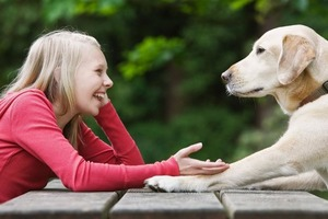 «Я люблю тебя!»: исследование утверждает, что частота сердечных сокращений у собак увеличивается, когда их владельцы говорят эту фразу