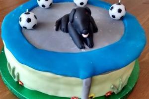 """""""Собака на батуте"""": простой рецепт забавного торта как для детей, так и для взрослых"""