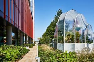 """Чтобы подчеркнуть повышение температуры в Великобритании, в Лондоне построили теплицу с тропическими растениями. Такие """"напоминалки"""" будут н"""