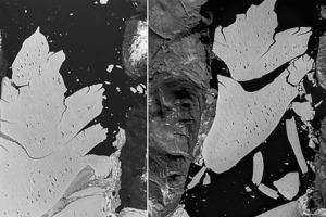 Кусок льда размером больше Парижа откололся от крупнейшего ледника Гренландии и разлетелся на части. Как это повлияет на уровень Мирового ок