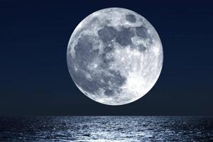Мы не должны исключать подземную жизнь на Луне и Марсе: новое исследование ученых Гарвардского университета