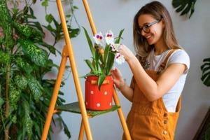 Они учат находить общий язык с людьми: как комнатные растения помогают нам в отношениях