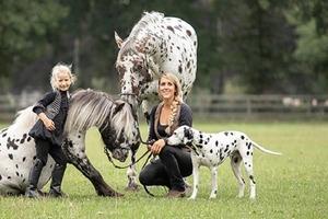 Семья стала популярной в Сети, ведь у них живет дома удивительное пятнистое трио: лошадь, пони и собака
