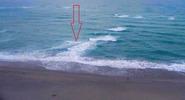 """Почему когда видишь """"дорожку"""" в море, надо срочно уплывать вправо или влево"""