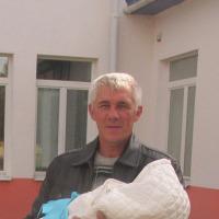 Петровкий Алексей